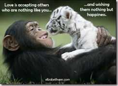 monkeytiger_lovehappiness